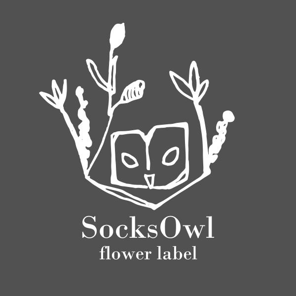 SocksOwl (2)